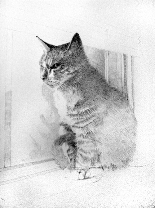 Freda in window, update number three. Still using the 2H woodless pencil, followed by a light covering of a HB pencil, I defined Freda's chest and darkened the window sill.