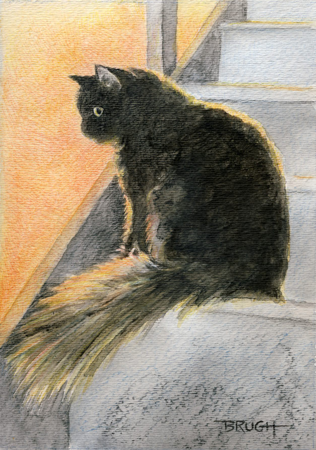 Blackie the cat. 5x7. Mixed media (watercolor, graphite, colored pencil).