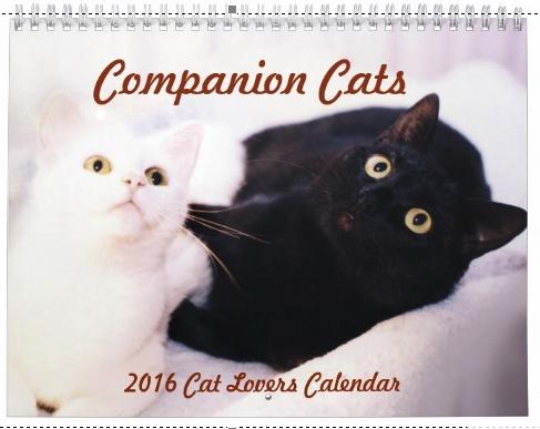 2016_CatCalendar