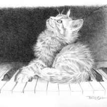 Day 7 - Kitten on Keys, graphite drawing by artist Michael Brugh