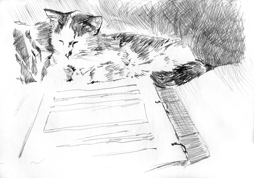 day 8 - Bowhead the cat, sketch for a future painting, by artist Michael Brugh