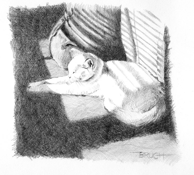 Day 19, A Drawing a Day, Duchess in the Morning, graphite drawing by artist Michael Brugh