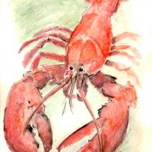 m-lobster